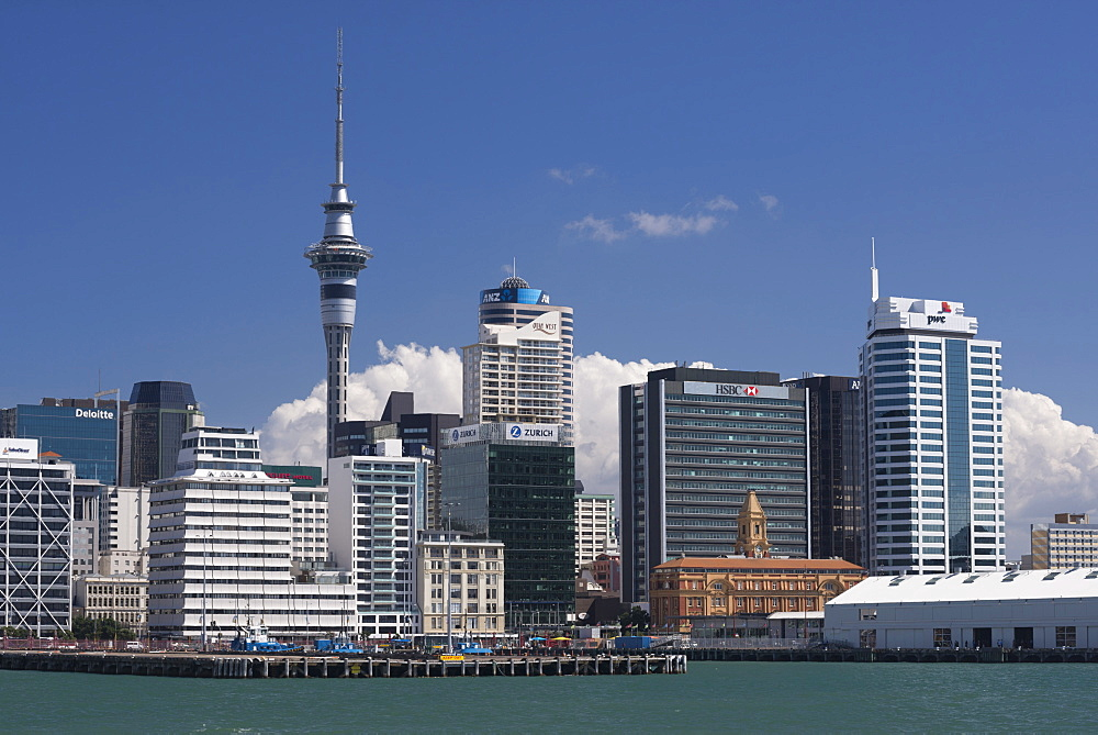 Auckland Sky Tower and city skyline, North Island, New Zealand, Pacific