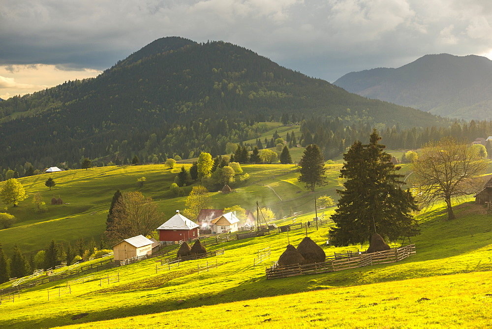 Farm and haystacks in the rural Transylvania landscape at sunset, Piatra Fantanele, Transylvania, Romania, Europe
