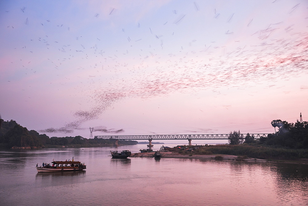 Bats swarming out of the Bat Cave at sunset, Hpa An, Kayin State (Karen State), Myanmar (Burma), Asia
