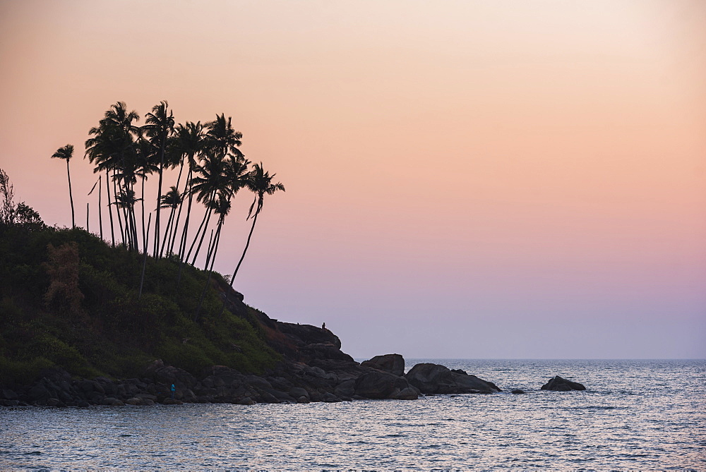 Palm trees silhouetted at Palolem Beach at sunset, Goa, India