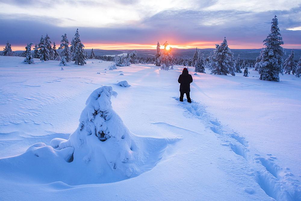 Hiking in Pallas-Yllastunturi National Park, Lapland, Finland, Europe