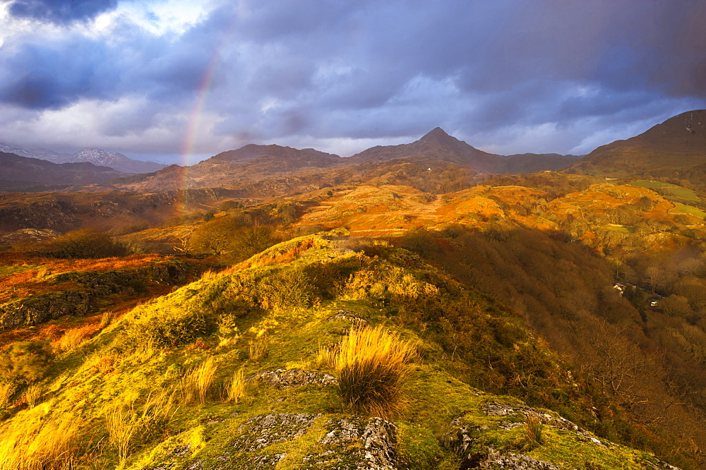 Cnicht under a rainbow at sunset, Snowdonia National Park, North Wales, Wales, United Kingdom, Europe