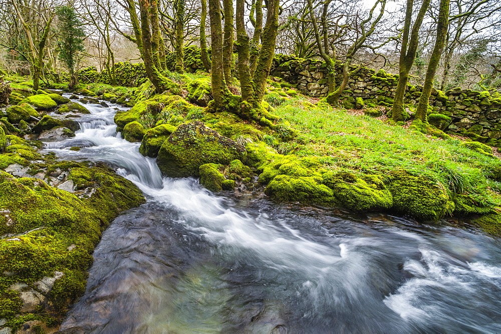 River in the Croesor Valley, Snowdonia National Park, Gwynedd, North Wales, Wales, United Kingdom, Europe