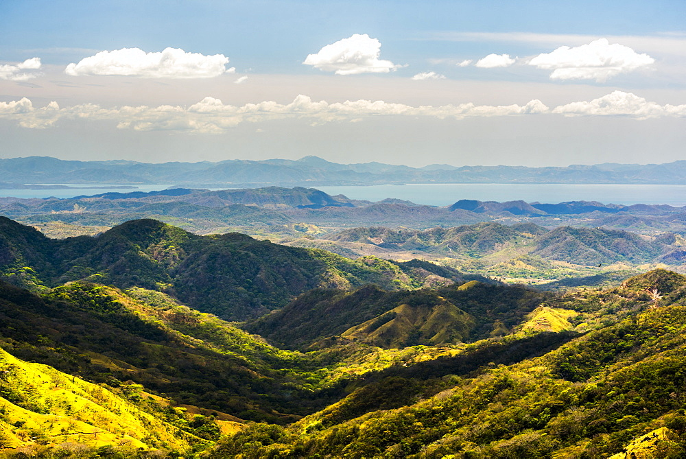 Monteverde Cloud Forest Reserve, Puntarenas, Costa Rica, Central America