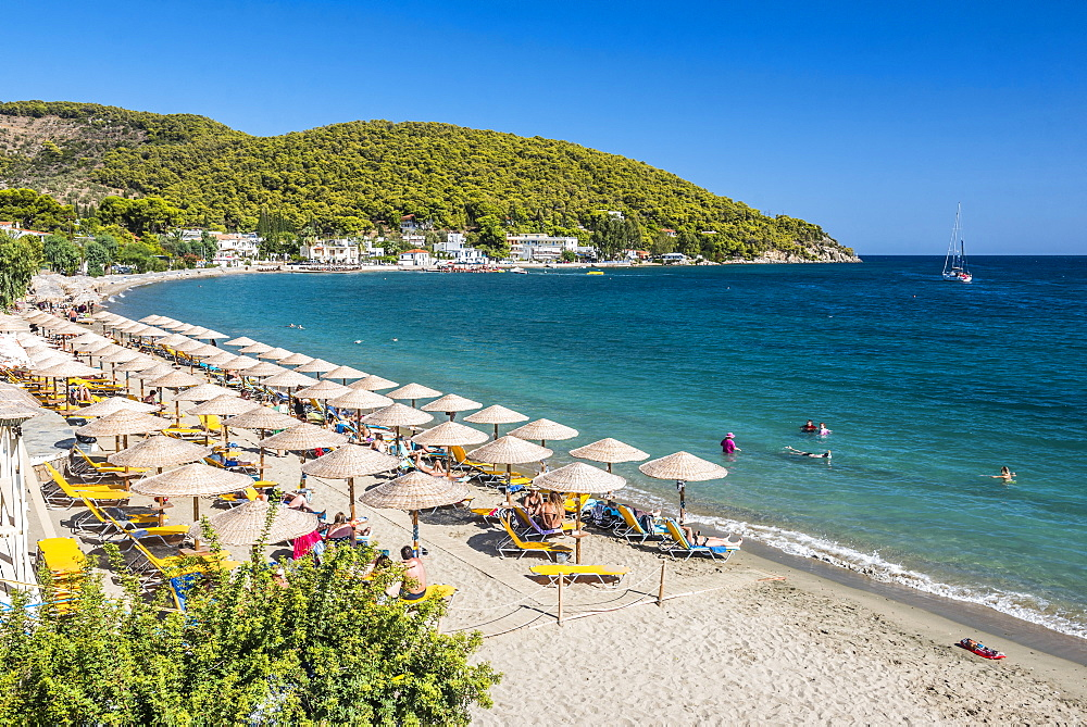 Beach on Poros Island, Saronic Island, Aegean Coast, Greek Islands, Greece, Europe