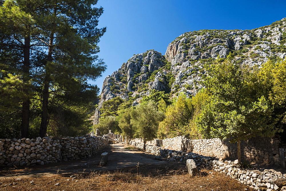 Ruins of Olympos, Antalya Province, Lycia, Anatolia, Mediterranean Sea, Turkey, Asia Minor, Eurasia