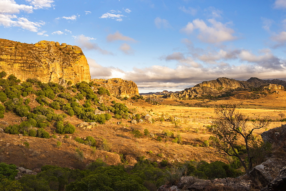 Isalo National Park landscape at sunrise, Ihorombe Region, Madagascar, Africa - 1109-3567