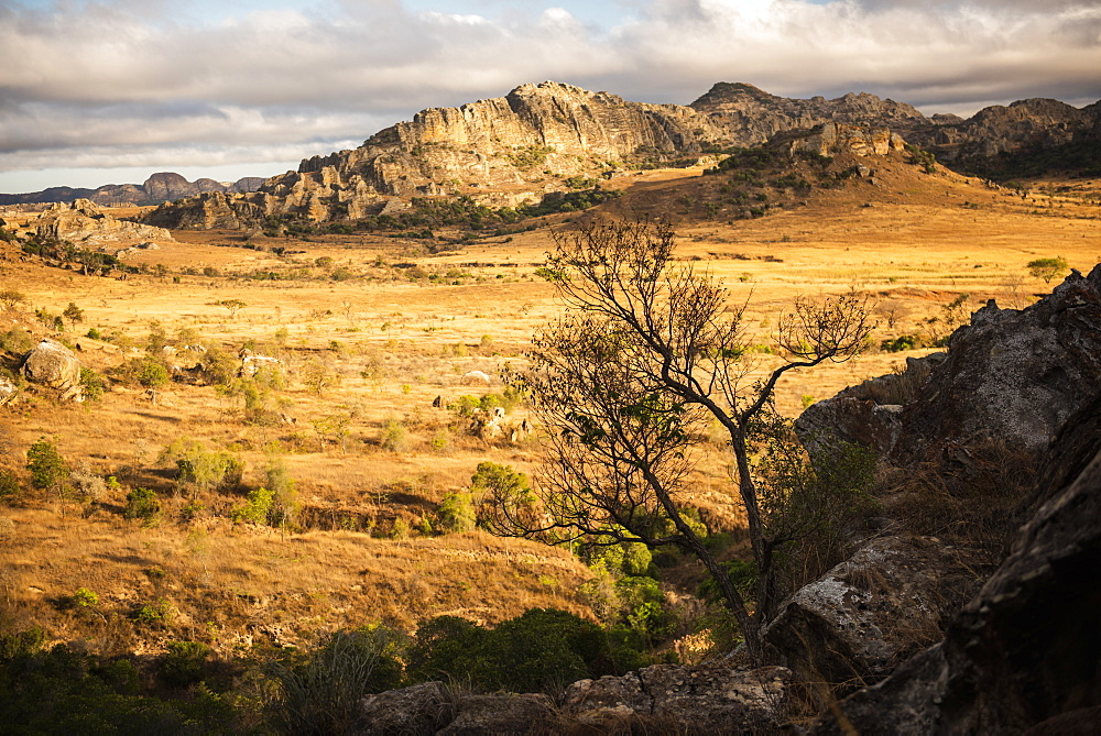 Isalo National Park landscape at sunrise, Ihorombe Region, Madagascar, Africa - 1109-3568