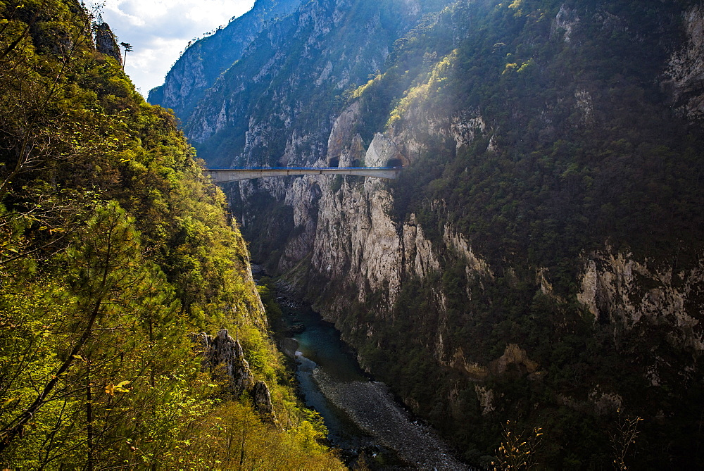 Bridge in Tara River Canyon Gorge, Durmitor National Park, UNESCO World Heritage Site, Montenegro, Europe - 1109-3586