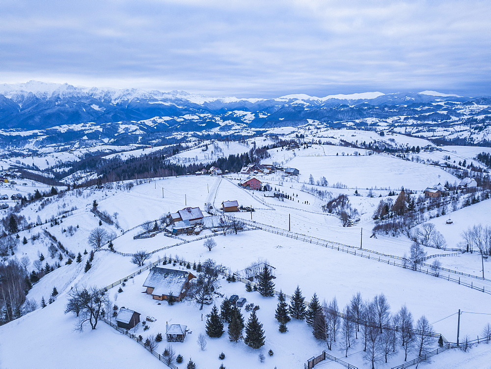 Snowy winter landscape in the Carpathian Mountains, Bran, Transylvania, Romania drone - 1109-3711
