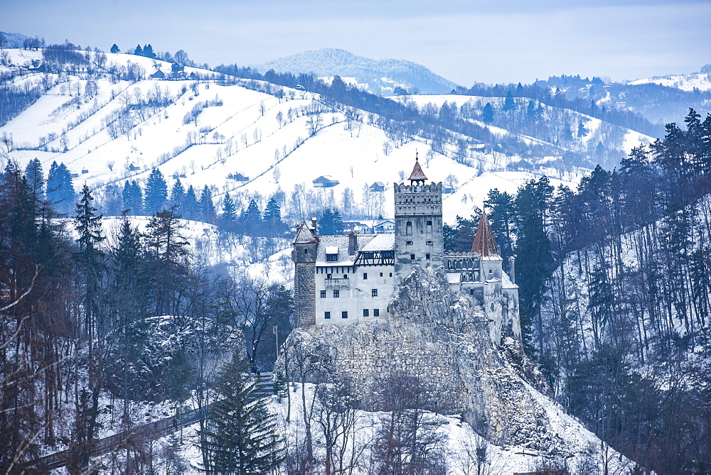 Bran Castle covered in snow in winter, Transylvania, Romania, Europe