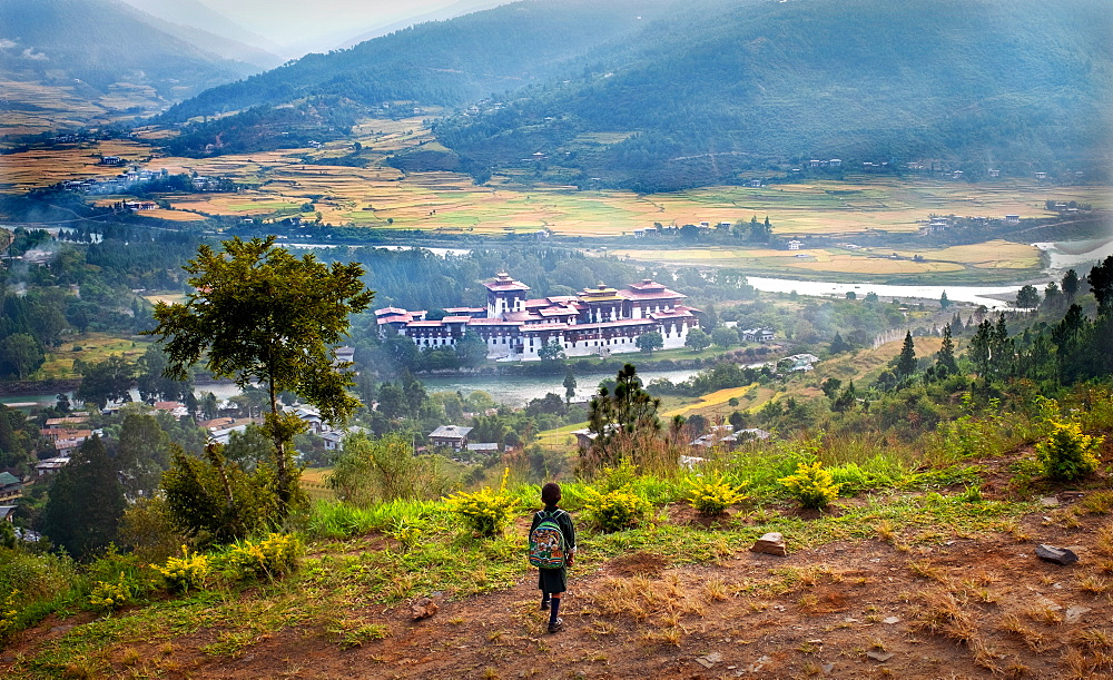 Young child looking down at Punakha Dzong, the second largest and second oldest dzong in Bhutan, Punakha, Bhutan, Asia - 1111-149