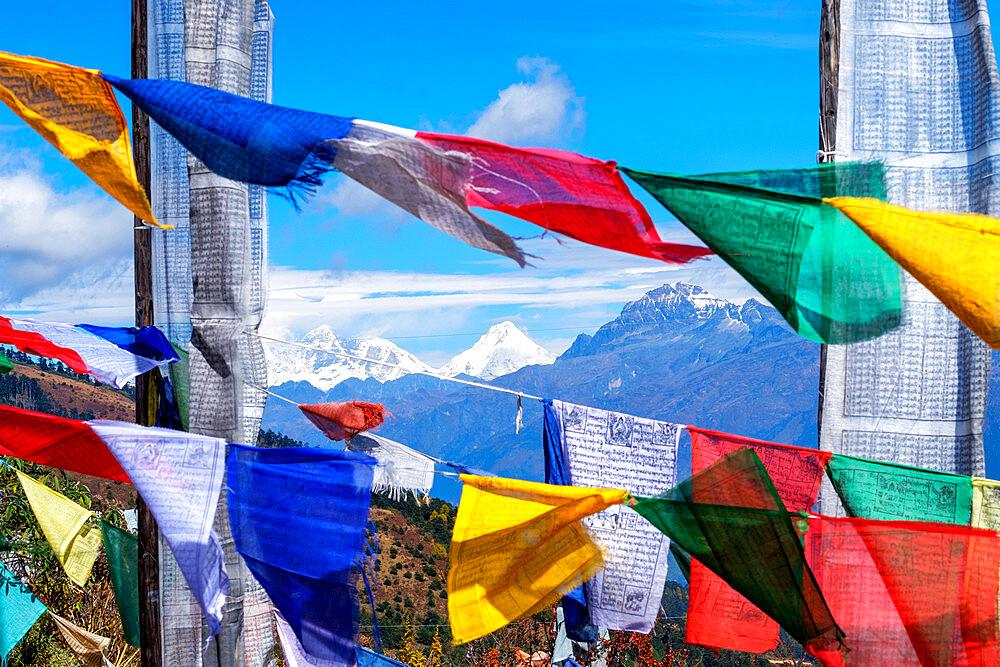Prayer flags at Chelela Pass against snowcapped Himalayas, Bhutan. - 1111-165