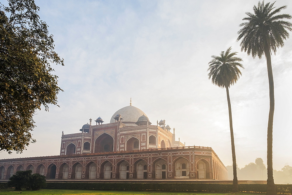 Palm trees by Humayun's Tomb at sunrise in Delhi, India, Asia