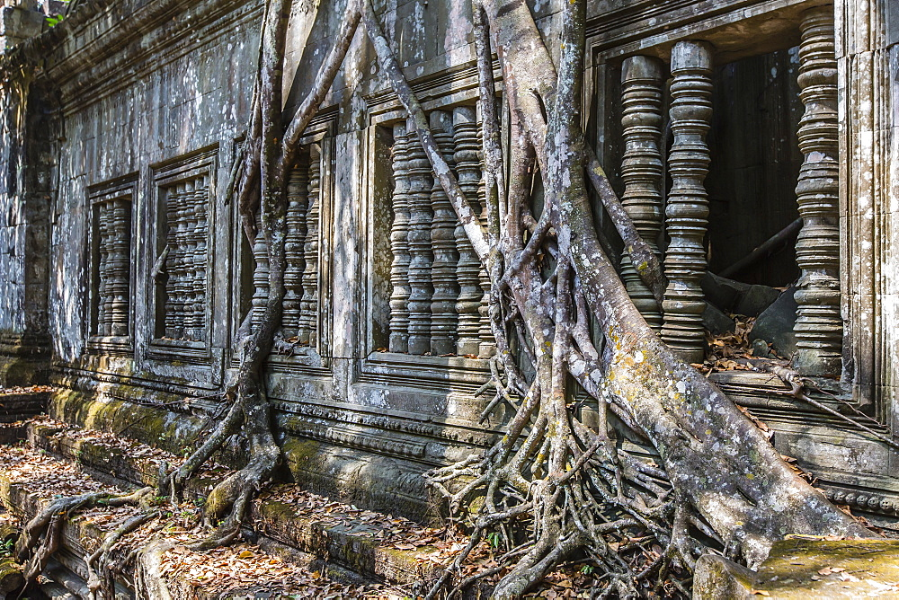 Beng Mealea Temple, overgrown and falling down, Angkor, UNESCO World Heritage Site, Siem Reap Province, Cambodia, Indochina, Southeast Asia, Asia