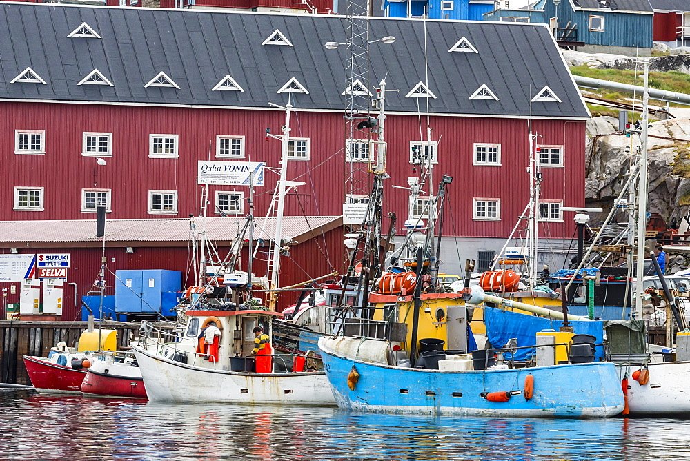 Commercial fishing and whaling boats line the busy inner harbour in the town of Ilulissat, Greenland, Polar Regions