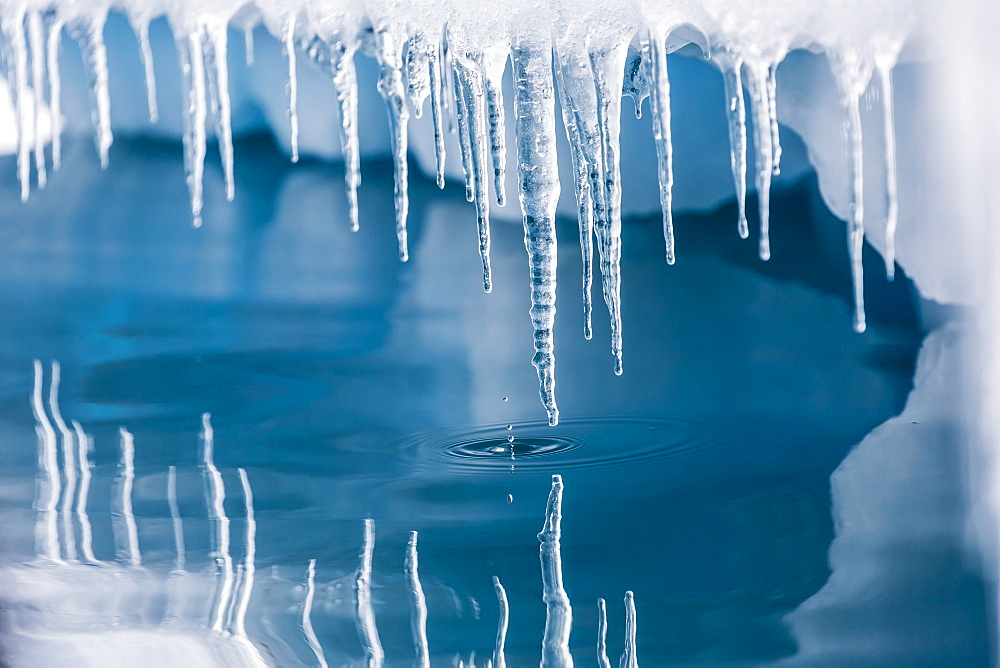 Icicles mirrored in calm water from ice floating in the Neumayer Channel near Wiencke Island, Antarctica, Polar Regions