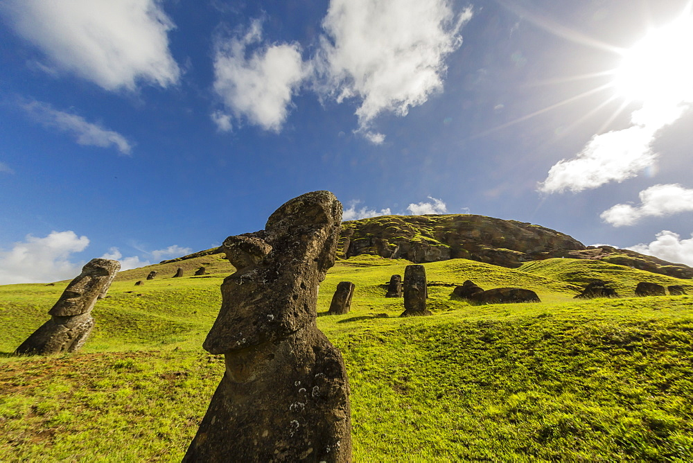 Moai sculptures in various stages of completion at Rano Raraku, the quarry site for all moai, Rapa Nui National Park, UNESCO World Heritage Site, Easter Island (Isla de Pascua), Chile, South America