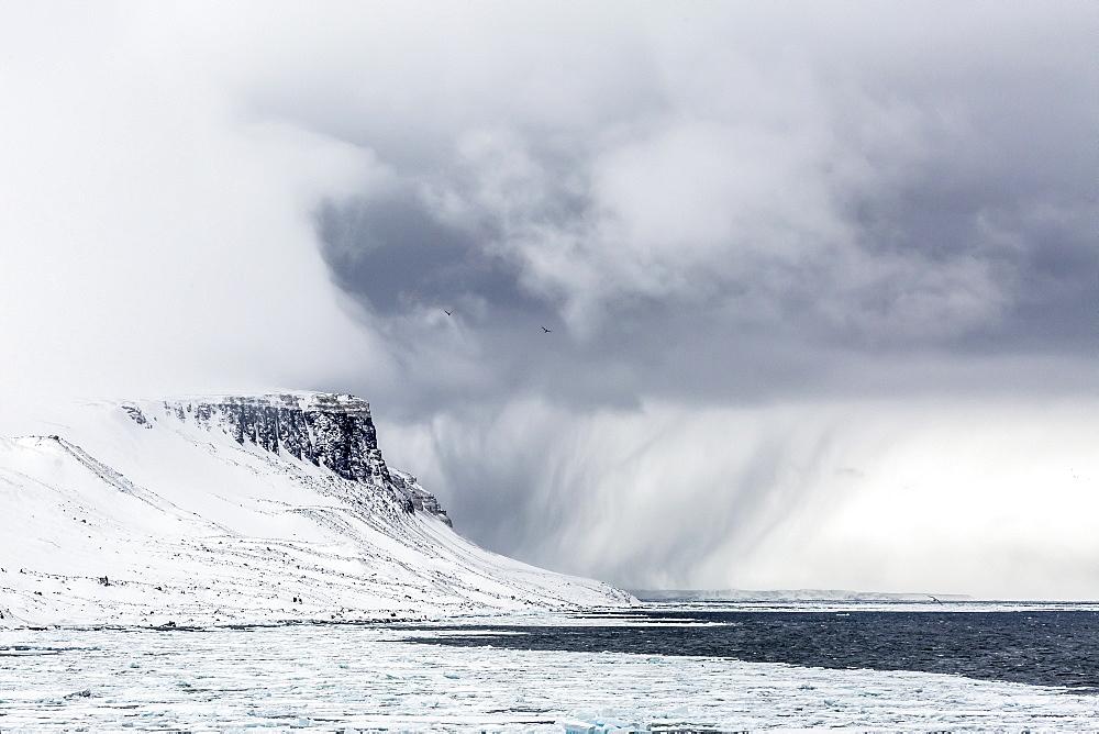 Snow storm approaching Alkefjelet, Cape Fanshawe, Spitsbergen, Svalbard, Arctic, Norway, Scandinavia, Europe
