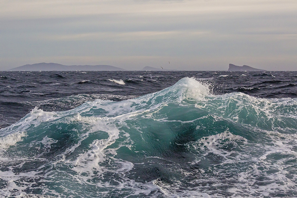 High winds and heavy seas on approach to the New Island Nature Reserve, Falkland Islands, South America