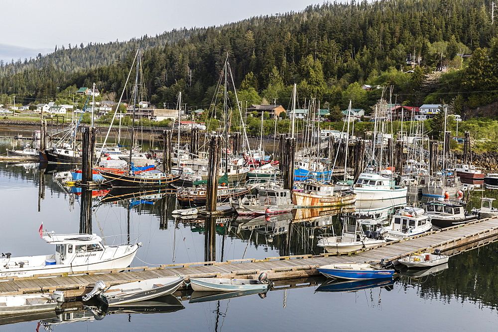 Queen Charlotte City Harbor, Bearskin Bay, Haida Gwaii (Queen Charlotte Islands), British Columbia, Canada, North America