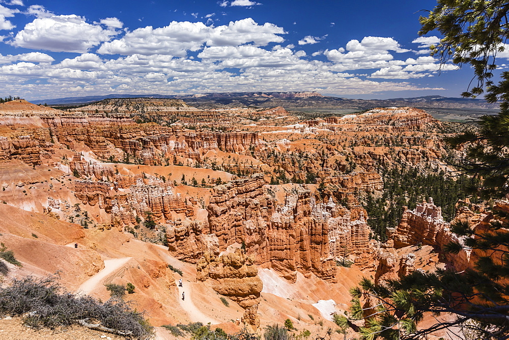 Hikers amongst hoodoo formations on the Sunrise Point Trail in Bryce Canyon National Park, Utah, United States of America, North America