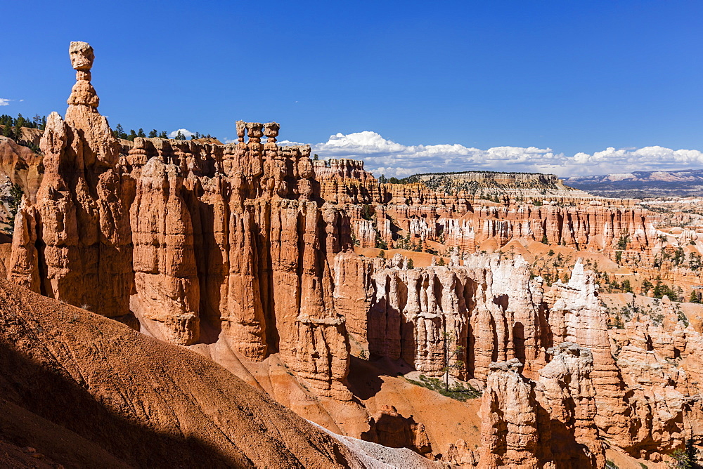 View of Thor's Hammer from the Navajo Loop Trail in Bryce Canyon National Park, Utah, USA. - 1112-3521