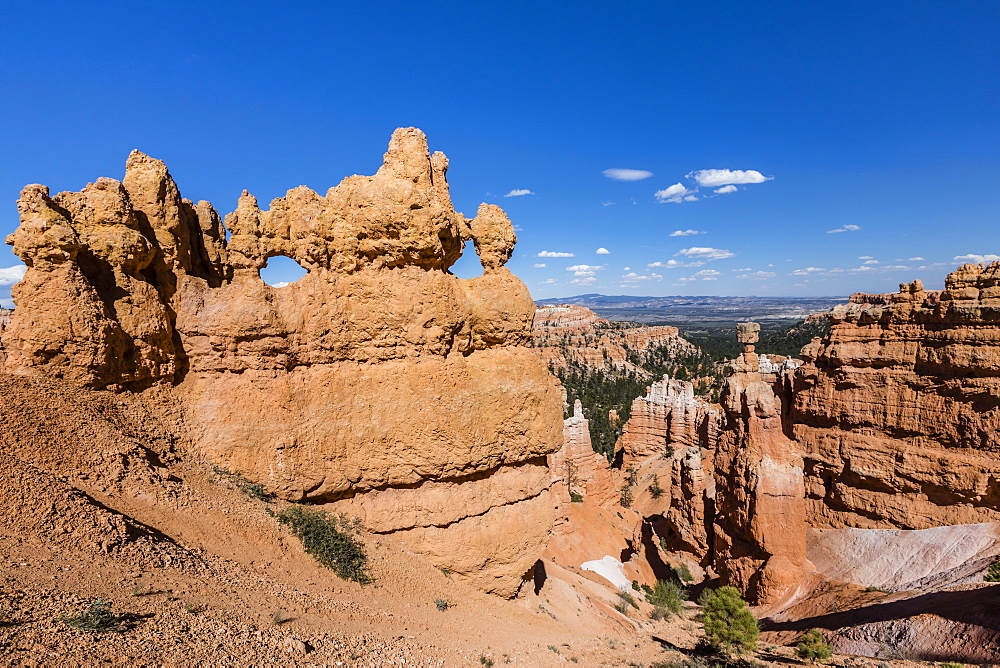 View of hoodoo formations from the Navajo Loop Trail in Bryce Canyon National Park, Utah, United States of America, North America