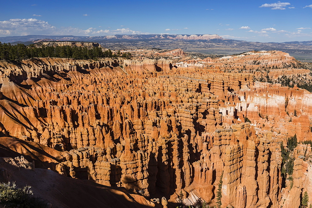 View of The Amphitheater from the Navajo Loop Trail in Bryce Canyon National Park, Utah, USA. - 1112-3524