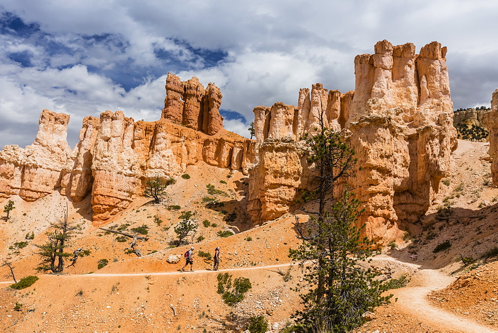 Hikers amongst hoodoo formations on the Fairyland Trail in Bryce Canyon National Park, Utah, United States of America, North America