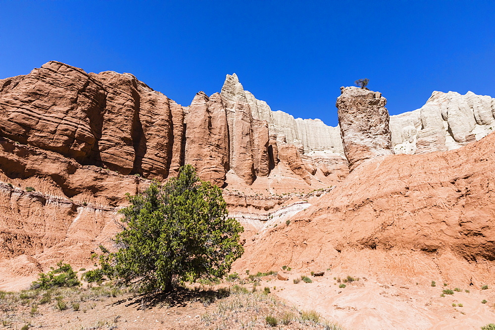 Red rock sandstone formations on the Grand Parade Trail, Kodachrome Basin State Park, Utah, USA.