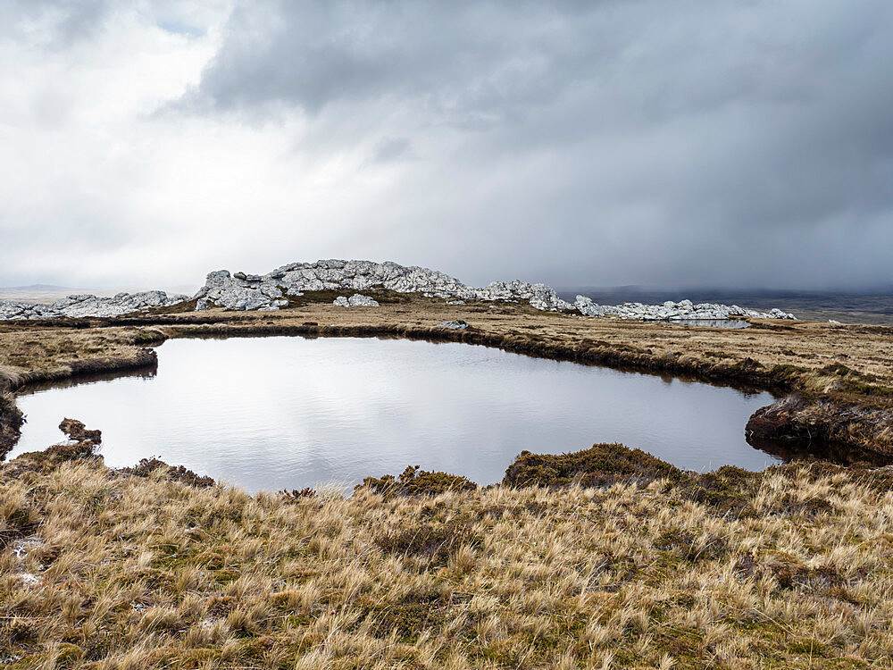 View of melt water pond on Mount Tumbledown, Falkland Islands, South America