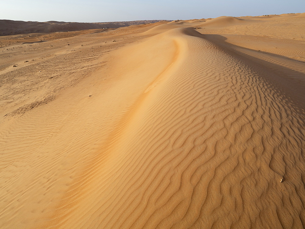 Sand dunes in the Ramlat Al Wahiba Desert, known locally as the Empty Quarter, Sultanate of Oman, Middle East