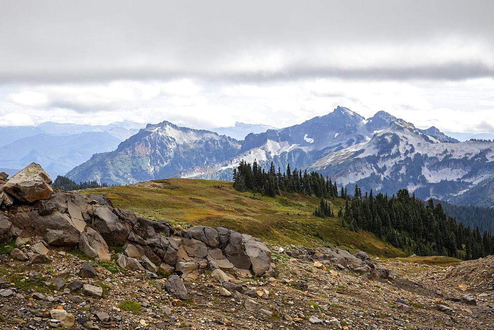 View of the Deadhorse Creek Trail, Mt. Rainier National Park, Washington, USA.