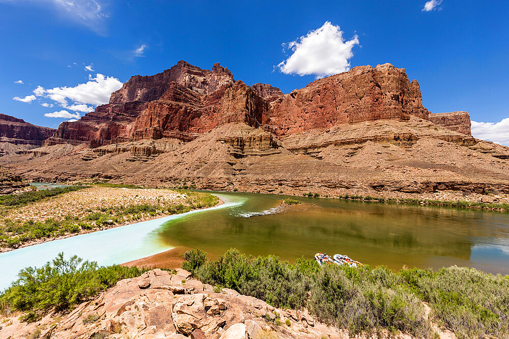 Confluence of the Little Colorado and Colorado Rivers, Grand Canyon National Park, Arizona, USA, North America. - 1112-5713