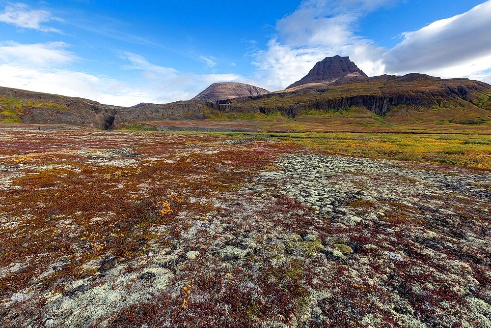 Open tundra and columnar basalt in Brededal, Disko Island, Qeqertarsuaq, Baffin Bay, Greenland, Polar Regions - 1112-5846