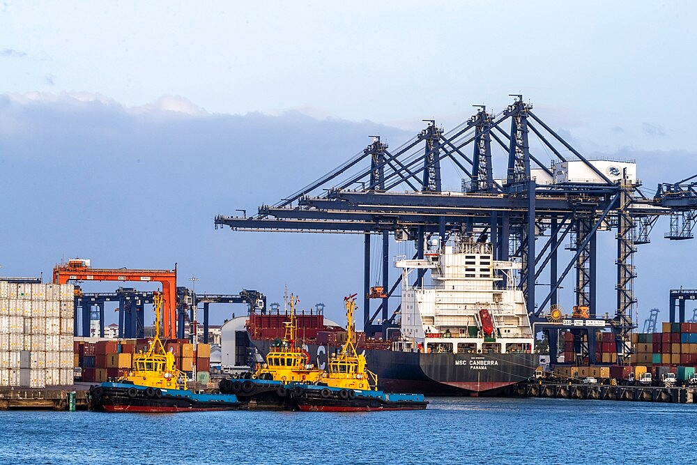 Cargo ships being loaded on Lake Gatun, near Gamboa, Panama Canal, Panama, Central America - 1112-5877