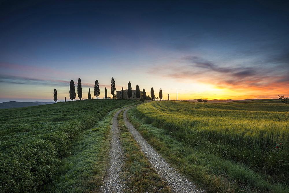 landscape near Pienza, Val d`Orcia, province of Siena, Tuscany, Italy, UNESCO World Heritage - 1113-104550