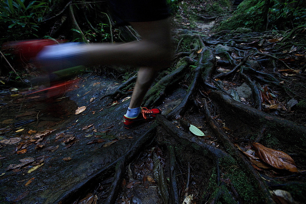 Young man running through a jungle, Dominica, Lesser Antilles, Caribbean - 1113-104803