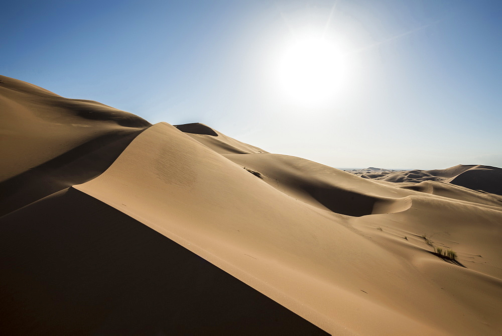 sand dunes, near Merzouga, Erg Chebbi, Sahara Desert, Morocco, Africa - 1113-104964