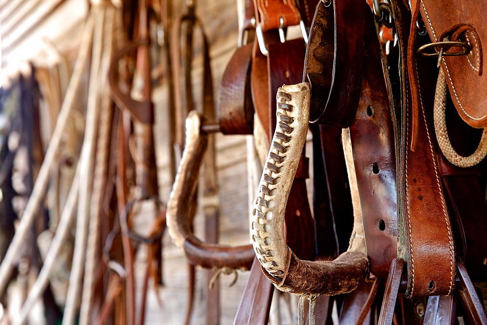 Hanged stirrup, Israel - 1113-104975