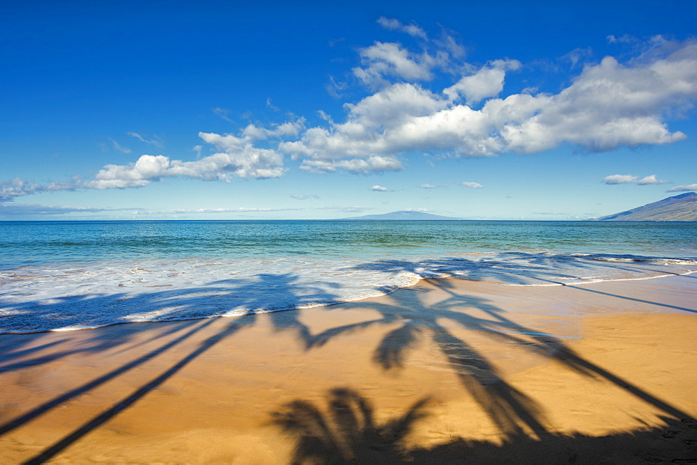 Shadows of palm trees on a beach on a sunny day, Maui, Hawaii, United States of America