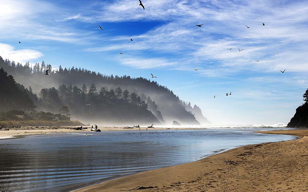 Birds flying over the tranquil water of an inlet off the Oregon coast, Oregon, United States of America