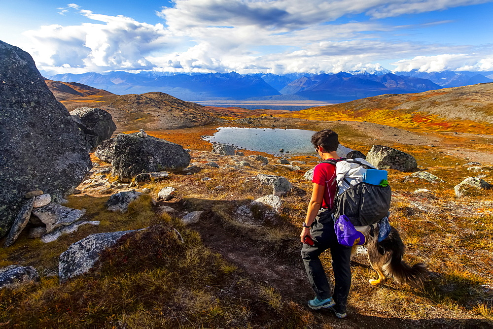 Woman backpacker and her dog backpacking on the Kesugi Ridge Trail in Denali State Park with views of Denali National Park and the Alaska Range in the background, Alaska, United States of America