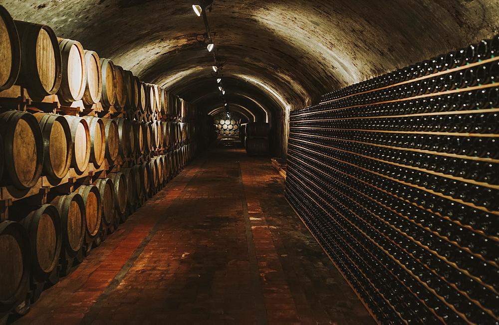 Wine cellar, Italy