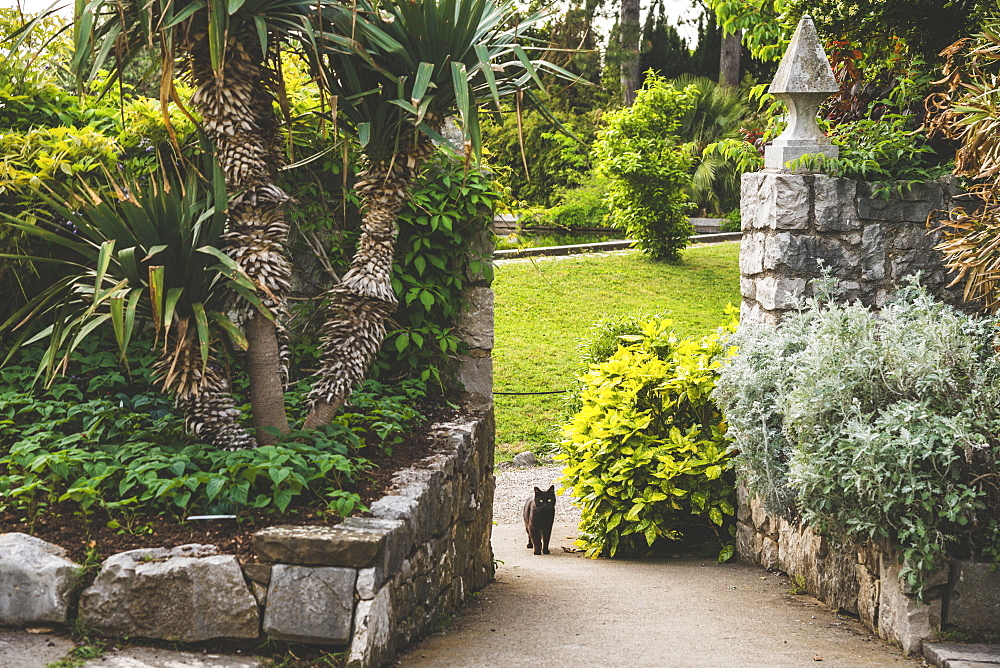 Stone walls and garden of Duino Castle with a cat on the walkway, Italy