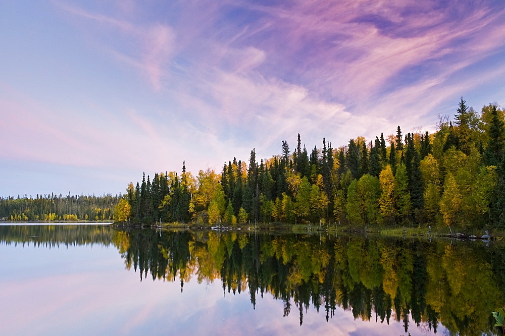 Autumn coloured foliage on the trees surrounding Dickens Lake at sunset, Saskatchewan, Canada