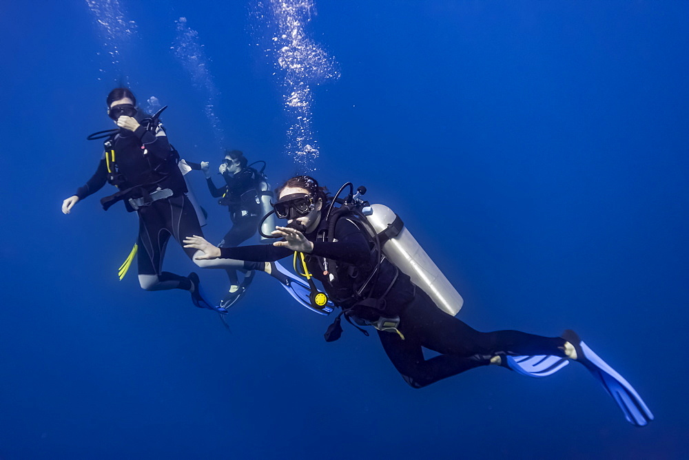 Scuba divers in Roatan Marine Park, West End Wall dive site, Roatan, Honduras