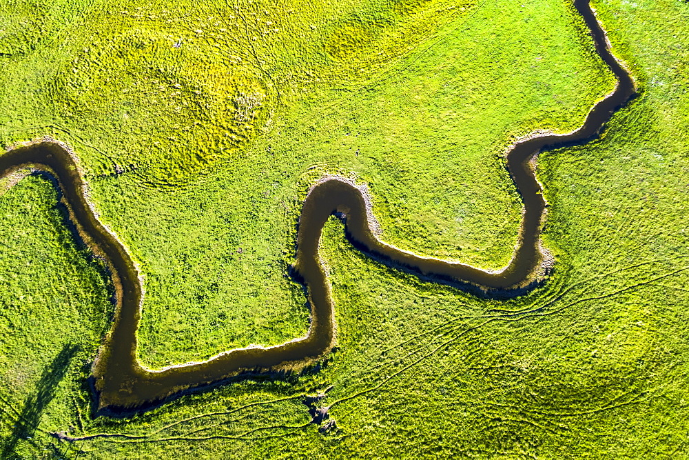 Aerial view looking straight down on a winding creek in a green field, near Millerville, Alberta, Canada