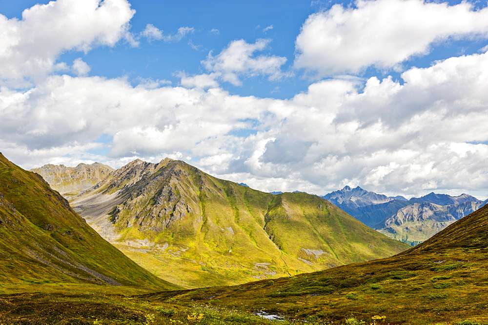 Mountains covered in green tundra on a sunny day in Hatcher Pass, South-central Alaska, Palmer, Alaska, United States of America